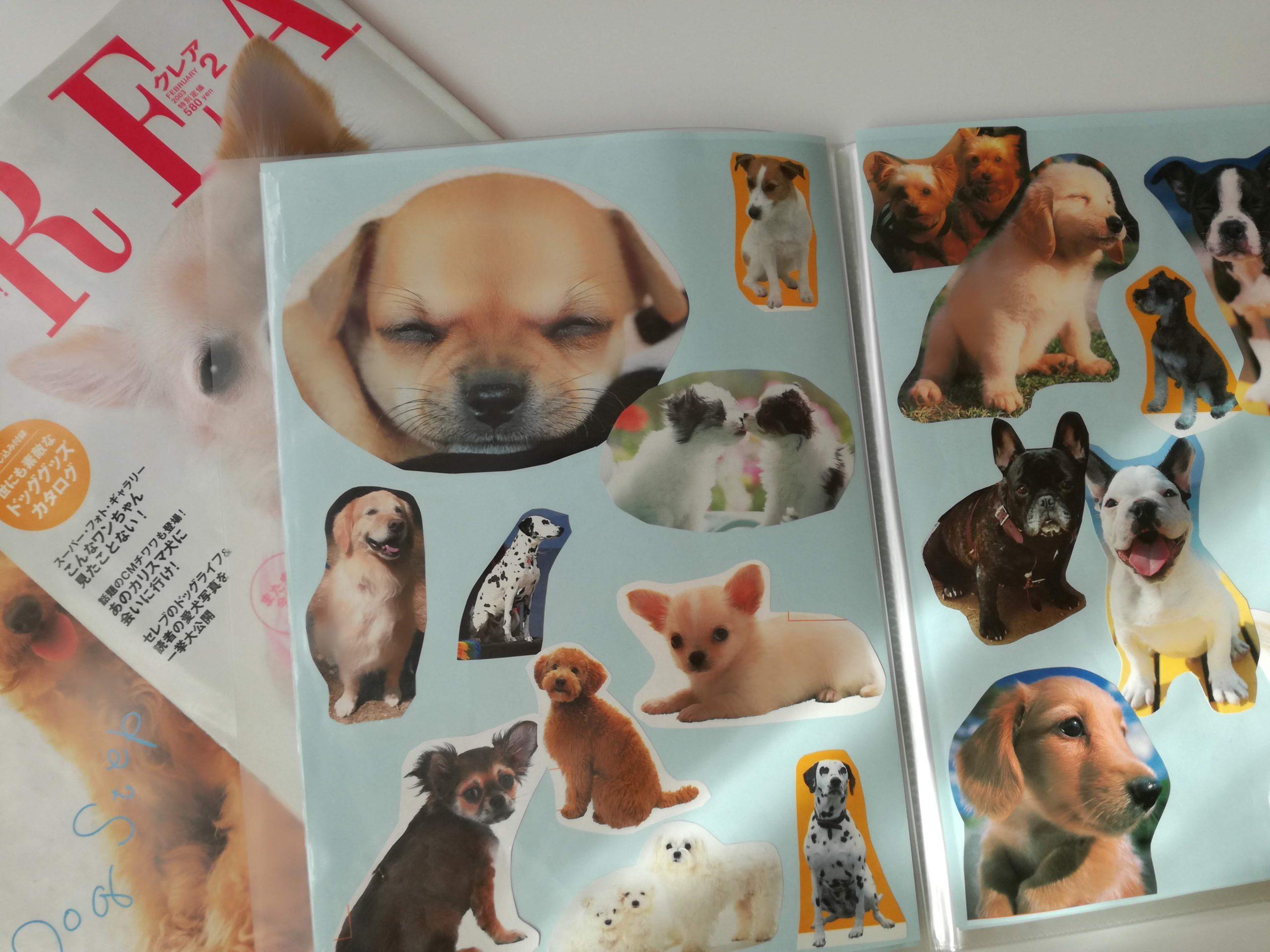 犬写真のスクラップ